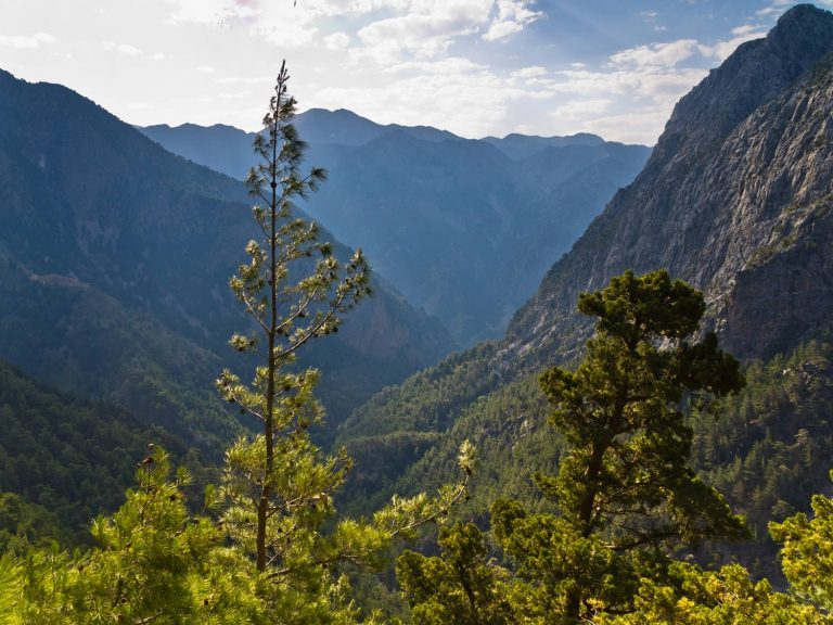 View of Samaria gorge